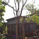 房総の風に吹かれた海山兼用カフェ〜cafe GROVE(富津市)