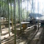 2月23日(土)大鷲山味噌づくり体験イベント開催のお知らせ(君津市)