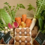 耕す木更津農場が期間限定で有機野菜ギフトセットの販売を開始しました(木更津市)
